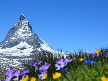 Vivere in Svizzera: Focus su Lavorare, Trasferirsi e Andare a Vivere nel paese elvetico