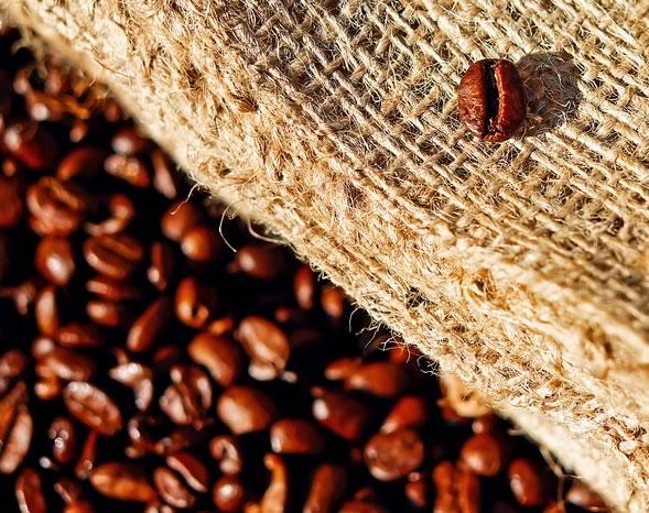 Previsioni sul prezzo del caffè