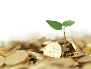 Investire in moneta bitcoin conviene