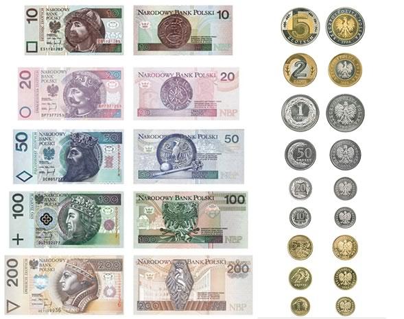 Previsioni Zloty Polacco: andamento contro Euro e Dollaro