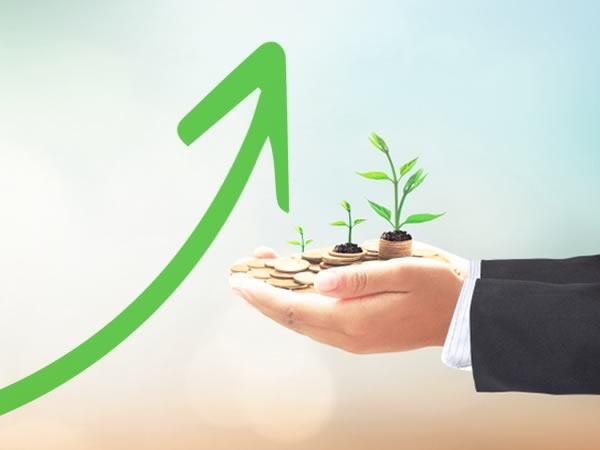 Investire nel biologico: trend 2019