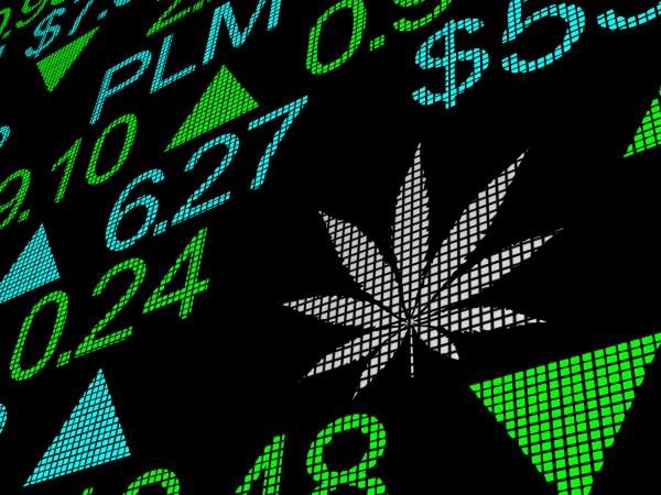 Come investire e fare trading sulla cannabis e sull'industria della marijuana legale