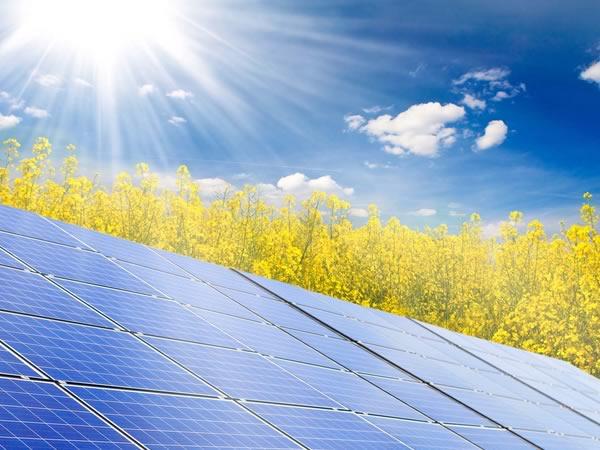 Investire nel Fotovoltaico: Conviene in Italia? Come fare?